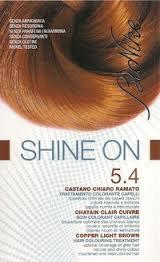 BIONIKE SHINE ON TRATTAMENTO COLORANTE PER CAPELLI - CASTANO CHIARO RAMATO 5.4