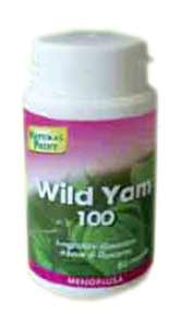 NATURAL POINT WILD YAM 100 - 80 CAPSULE