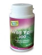 NATURAL POINT WILD YAM 300 - 50 CAPSULE