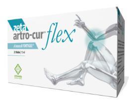 ZETA ARTRO CUR FLEX 20 STICK